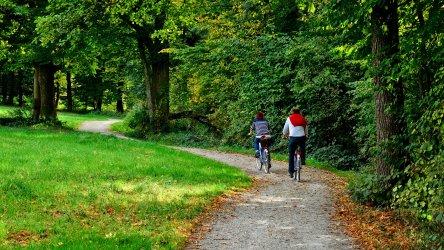 pixabay_cycling-979583